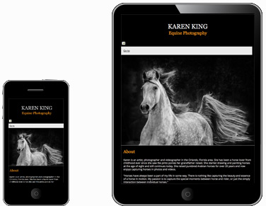 Equine Photography by Karen King